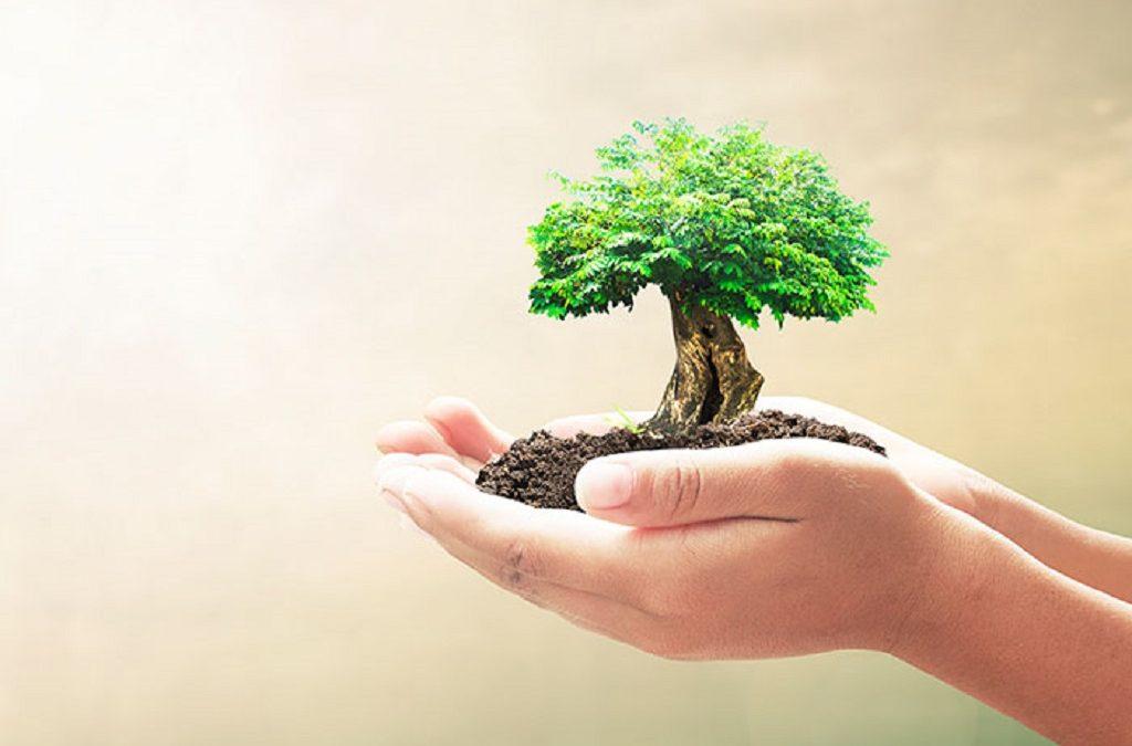 La impresión 3D y su relación el medioambiente